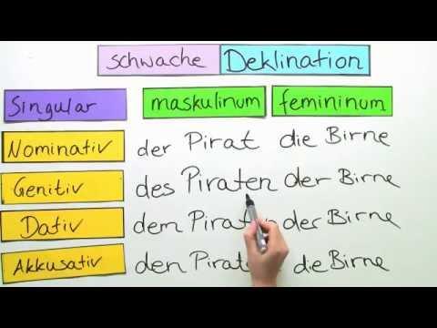 Cách Chia Đuôi Danh Từ Trong Tiếng Đức