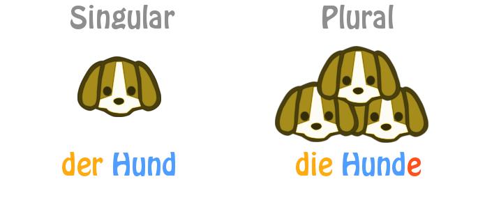 Dạng Số Nhiều Danh Từ Tiếng Đức